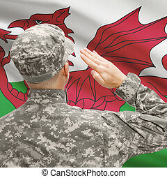 Soldier in hat facing national flag series - Wales -...
