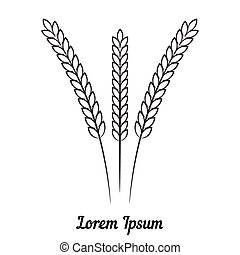 Three wheat spikelet on white background - Vector three...