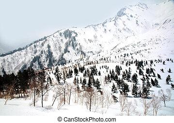 Japan Alps , Winter moutains with snow.Takayama Gifu, Japan