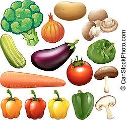 differente, tipo, di, fresco, verdura,