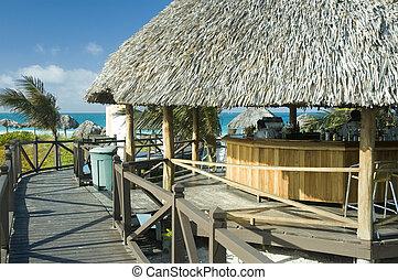 Palapa bar - a palapa bar by the beach at a tropical resort