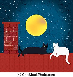 Black and white cats on the roof
