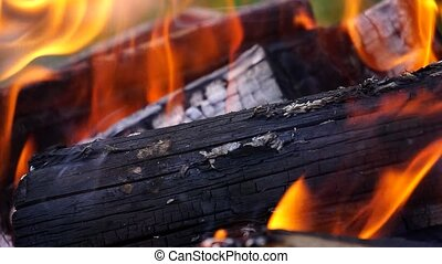 He lit the fire Camera close-up Burning logs Burning Embers...