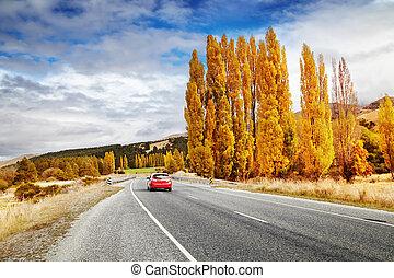 Autumn landscape, New Zealand - Autumn landscape with road...