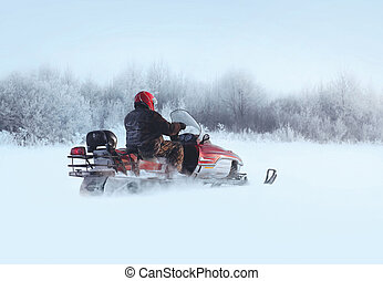 Man rides a snowmobile through the snowdrifts in winter day