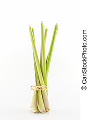 Lemon grass or Oil grass - Lemon grass or Oil grass on white...