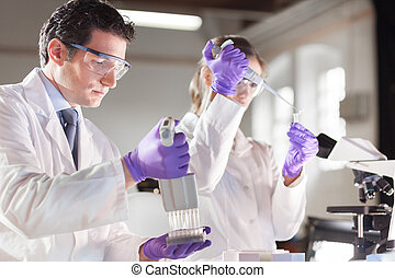 Life scientist researching in the laboratory. - Life...