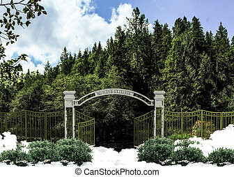 heaven gate open on a luxuriant environment