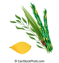 illustration of four species - palm, willow, myrtle , lemon...