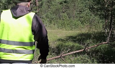Forest officer walking in forest