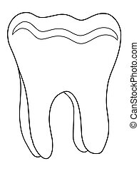 human tooth - outline illustration of human tooth