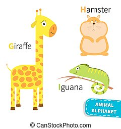 Letter G H I Giraffe Hamster Iguana Zoo alphabet English abc...