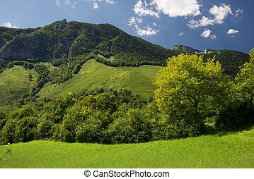 Pyrenees - Mountain and meadows in Aspe Valley, France.