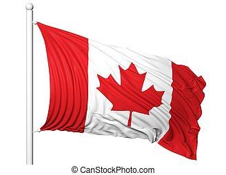 Waving flag of Canada on flagpole, isolated on white...