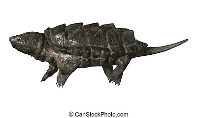 Alligator Snapping Turtle - 3D digital render of an...