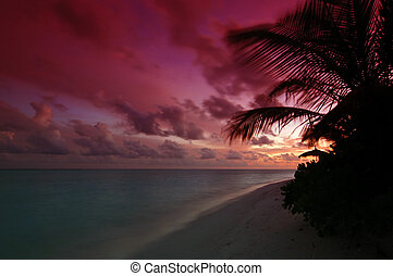 Sunset in the Maldives - Sun is setting in the sea and...