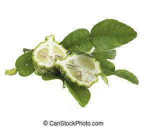 Bergamot citrus fruits Isolated on white background