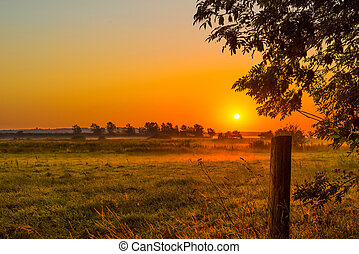 Misty morning with a sunrise - Countryside landscape in a...