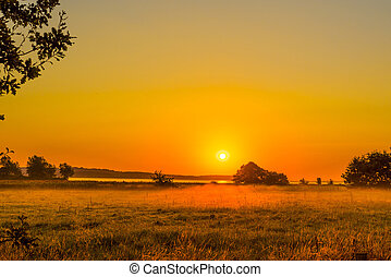 Early morning with a sunrise over a misty field