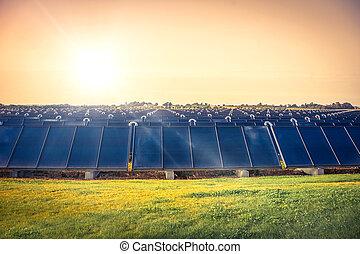Solar cell park on a field