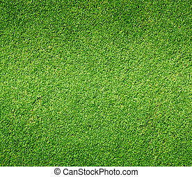 Golf Courses green lawn outdoor background texture.