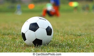 Soccer ball on the grass and training children