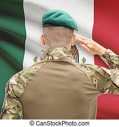 fuerzas, México, serie, nacional, -, bandera, Plano de...
