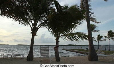 Beach Upper Keys - Scenic Beach view Upper Florida Keys