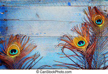 Three peacock feathers on wood