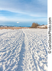 Tracks in the Snow - Worn tracks in a snowy landscape,...