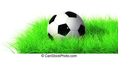 football - The picture is drawn in 3ds max (v-ray)