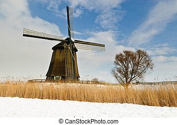 beau, éolienne, hiver, paysage