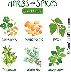 Herbs and spices collection 6. For essential oils, ayurvedic...