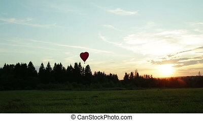 Hot air balloons flying over trees sunset - Hot air balloons...