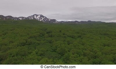 Volcano and forest in Russia on Kamchatka