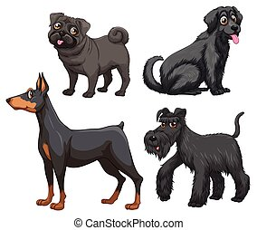Different kind of dogs illustration