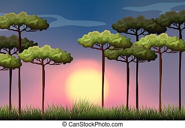 Nature scene at sunset illustration