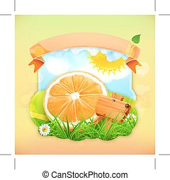 Fresh fruit label orange,illustration background for making...