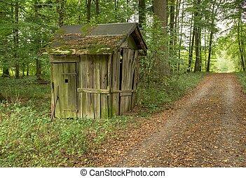 rundown cottage - small rundown cottage in a forest