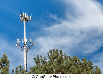 Tall telecommunication monopole tower behind pine trees -...
