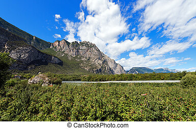 Apple Orchards in Sarca Valley - Trentino Italy - Apple...
