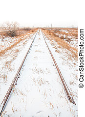 Portrait Landscape of Snowy Tracks - Portrait landscape of...