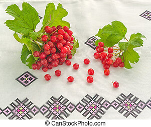 viburnum branch with berries on ethnic tablecloth