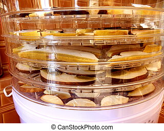 Drying Ceps - Layers of sliced ceps drying in an electric...