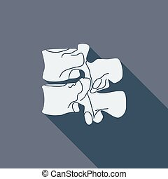 Anatomy spine icon Flat vector related icon with long shadow...