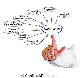 Data Assets