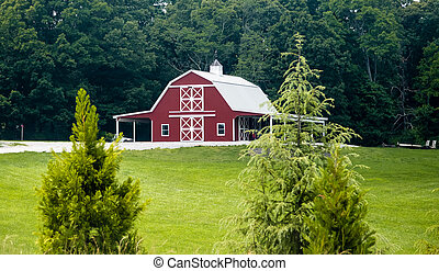 New Red Barn Beyond Evergreens