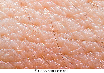 Human skin macro - Macro of human skin on the hand wrist