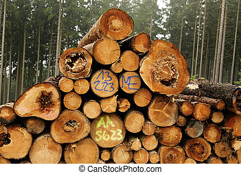lumber industry - A large stack of felled trees with markers...