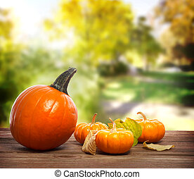 Orange pumpkins with a yellow trees background